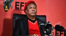 Julius Malema/ EFF Twitter